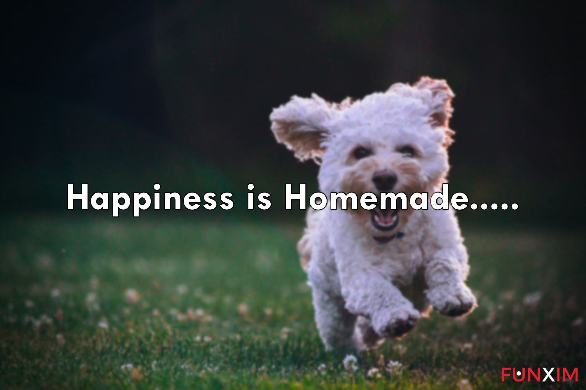 Happiness is homemade.....