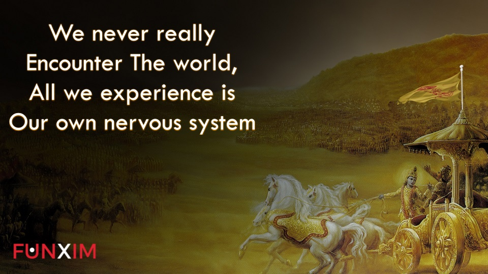 we never really encounter the world; all we experience is our own nervous system