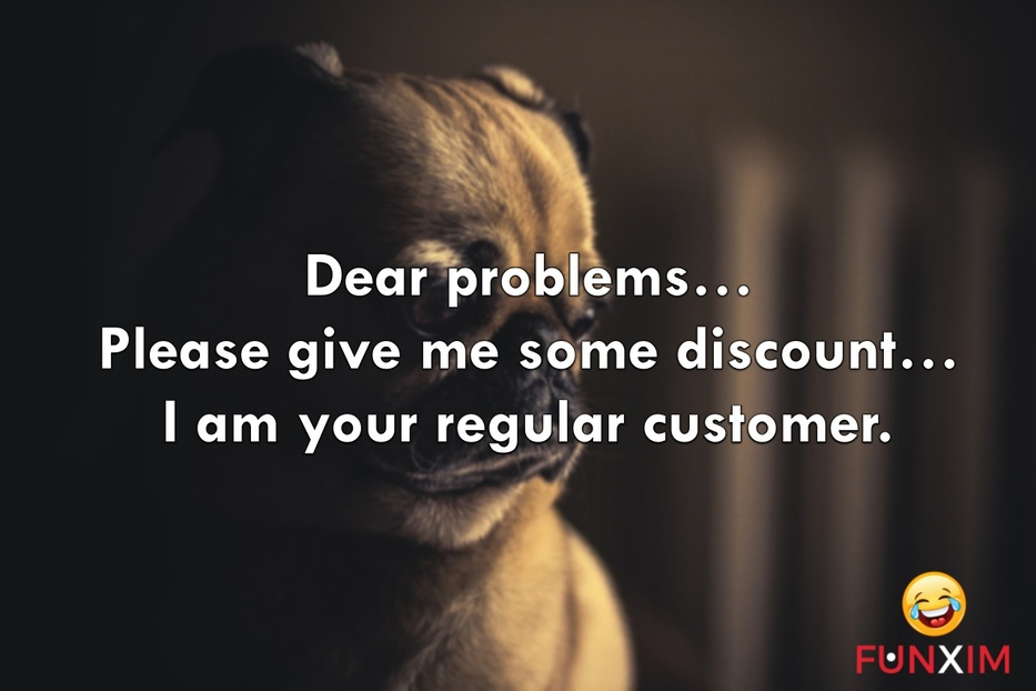 Dear problems… Please give me some discount… I am your regular customer.