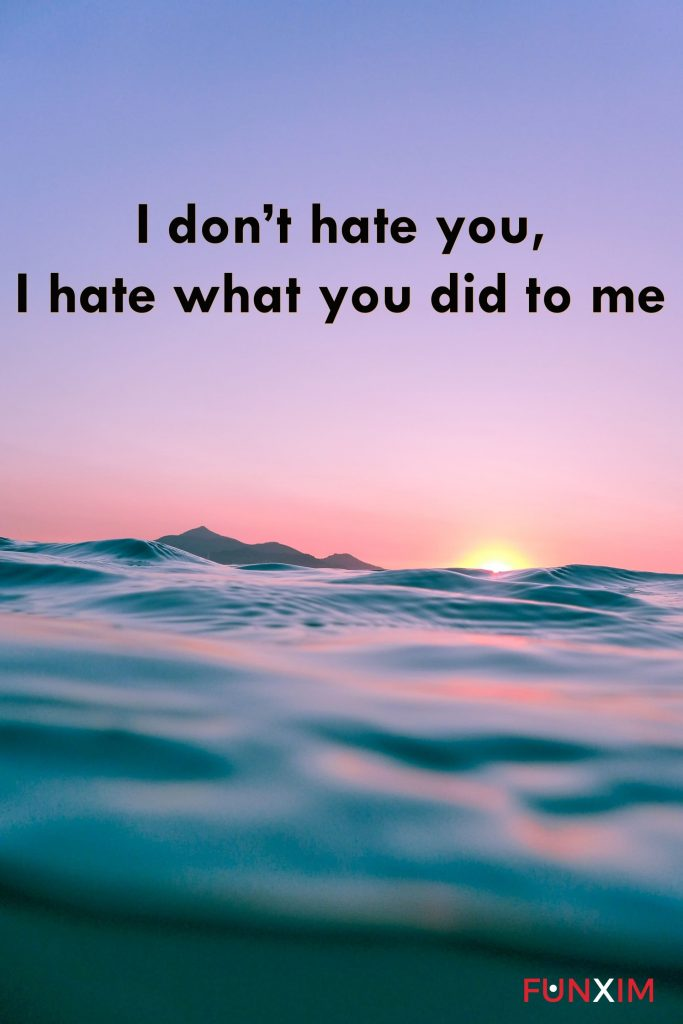 I don't hate you, I hate what you did to me